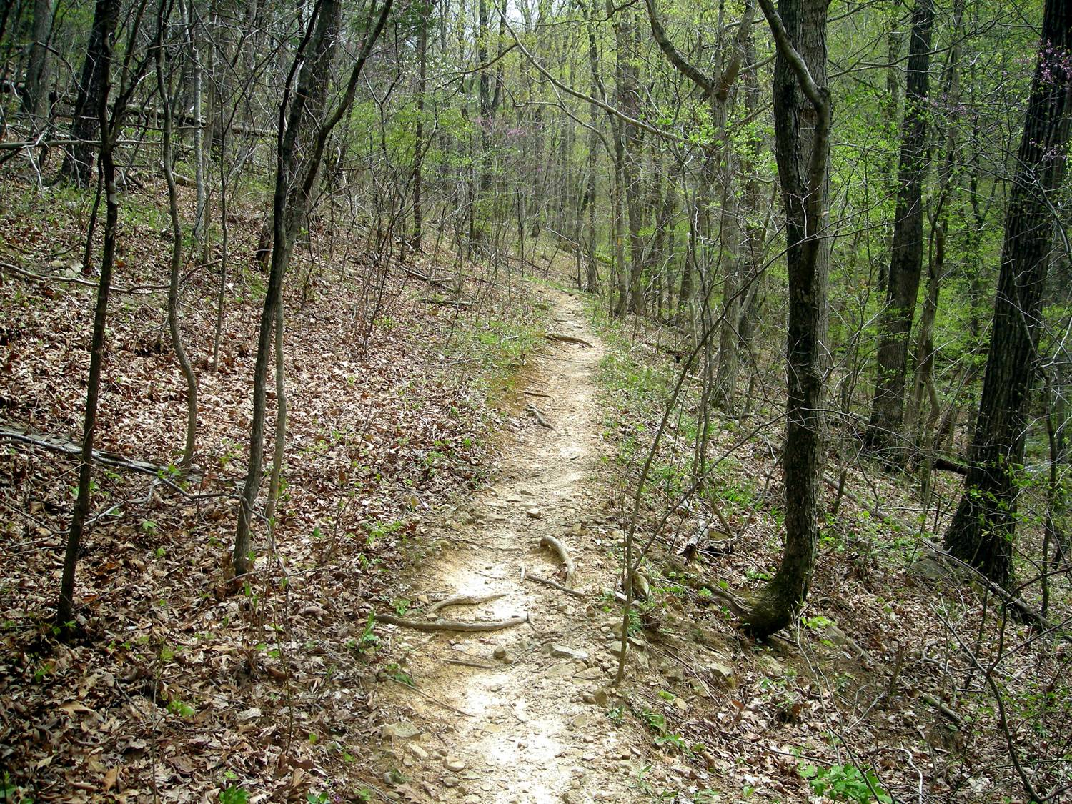 042412-lets-stay-together-staycation-scenic-trail.jpg
