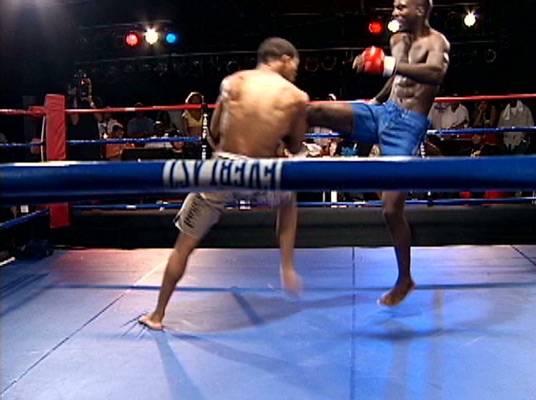 Jump Kick - Mixed martial arts uses a variety of kicks, punches and holds.