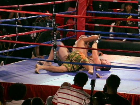 Getting Down - Like with wrestling, fighters can win by pinning down their opponent.