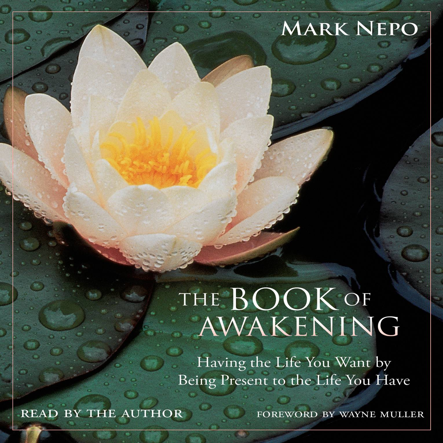 FROM WITHIN - The Book of Awakening: Having the Life You Want by Being Present to the Life You Have by Mark NepoFilled with key pointers from Mark Nepo, a philosopher, mini lessons will teach you why not to take life for granted. This is a spiritual book that may help you awaken ways to be more appreciative of the life you have, therefore creating a better life.(Photo:Conari Press)
